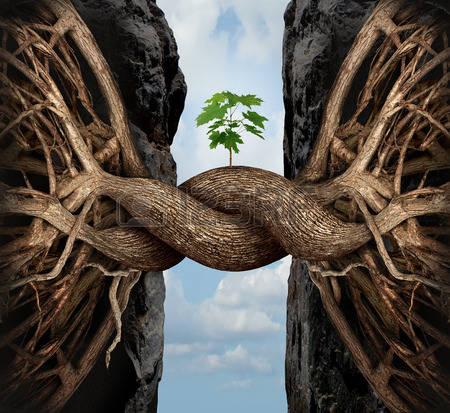 36762214-concetto-di-crescita-unity-e-il-ponte-simbolo-di-business-gap-come-due-radici-di-alberi-su-un-alta-s