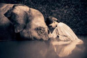 wpid-compassion_2-e1434948079383